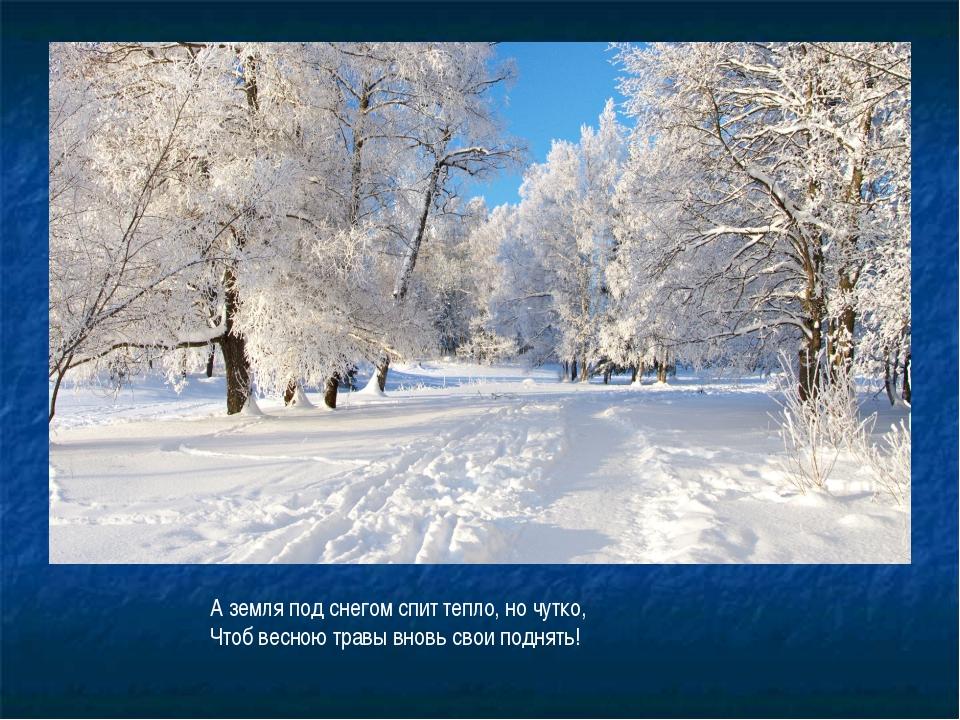 А земля под снегом спит тепло, но чутко, Чтоб весною травы вновь свои поднять!