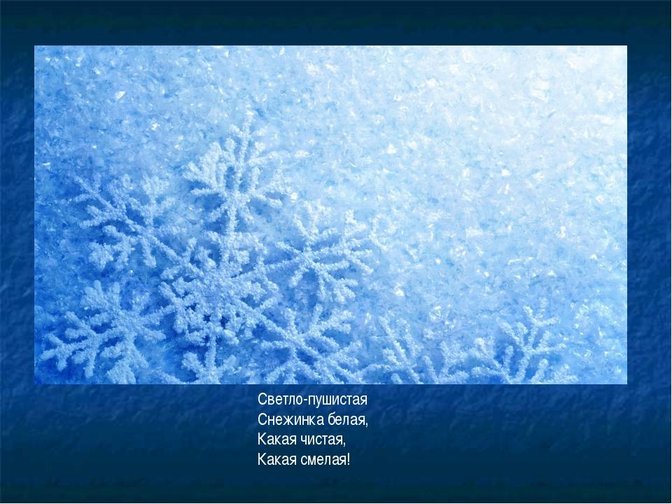 https://fs00.infourok.ru/images/doc/239/170120/1/img8.jpg