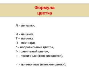 Формула цветка Л – лепестки, Ч – чашечка, Т – тычинка П – пестик(и), ^- неп