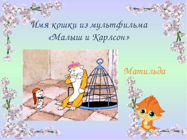 Имя кошки из мультфильма «Малыш и Карлсон» Матильда