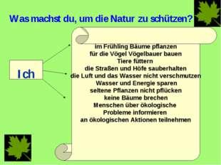 Was machst du, um die Natur zu schützen? Ich im Frühling Bäume pflanzen für d