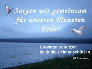 Sorgen wir gemeinsam für unseren Planeten Erde! Die Natur schützen heiβt die