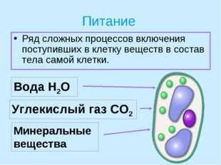 Питание Ряд сложных процессов включения поступивших в клетку веществ в состав