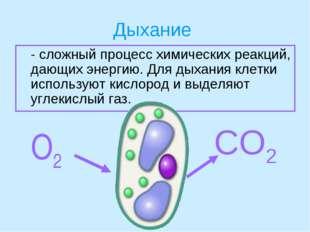 Дыхание - сложный процесс химических реакций, дающих энергию. Для дыхания кл