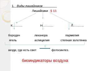1. Виды лишайников Лишайники § 13. К………. Н……….. Л……….. бородач леканора парм