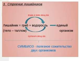 3. Строение лишайников вода и мин.вещ-ва Лишайник = гриб + водоросль единый