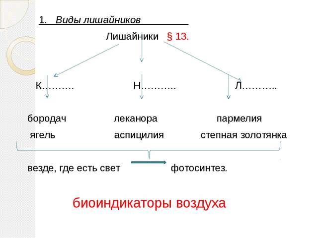 1. Виды лишайников Лишайники § 13. К………. Н……….. Л……….. бородач леканора парм...