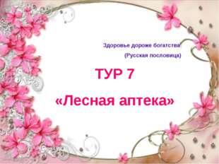 ТУР 7 «Лесная аптека» Здоровье дороже богатства (Русская пословица)