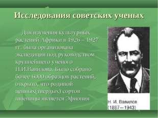 Исследования советских ученых Для изучения культурных растений Африки в 1926