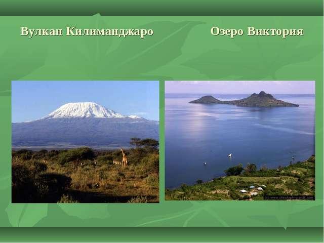 Вулкан Килиманджаро Озеро Виктория