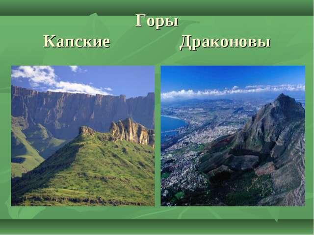 Горы Капские Драконовы