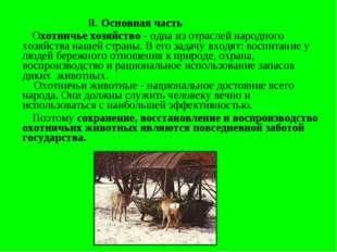 II. Основная часть Охотничье хозяйство - одна из отраслей народного хозяйств