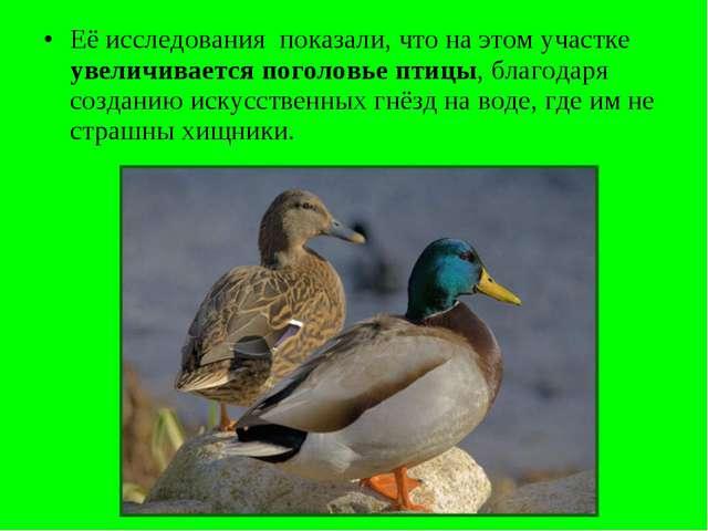 Её исследования показали, что на этом участке увеличивается поголовье птицы,...