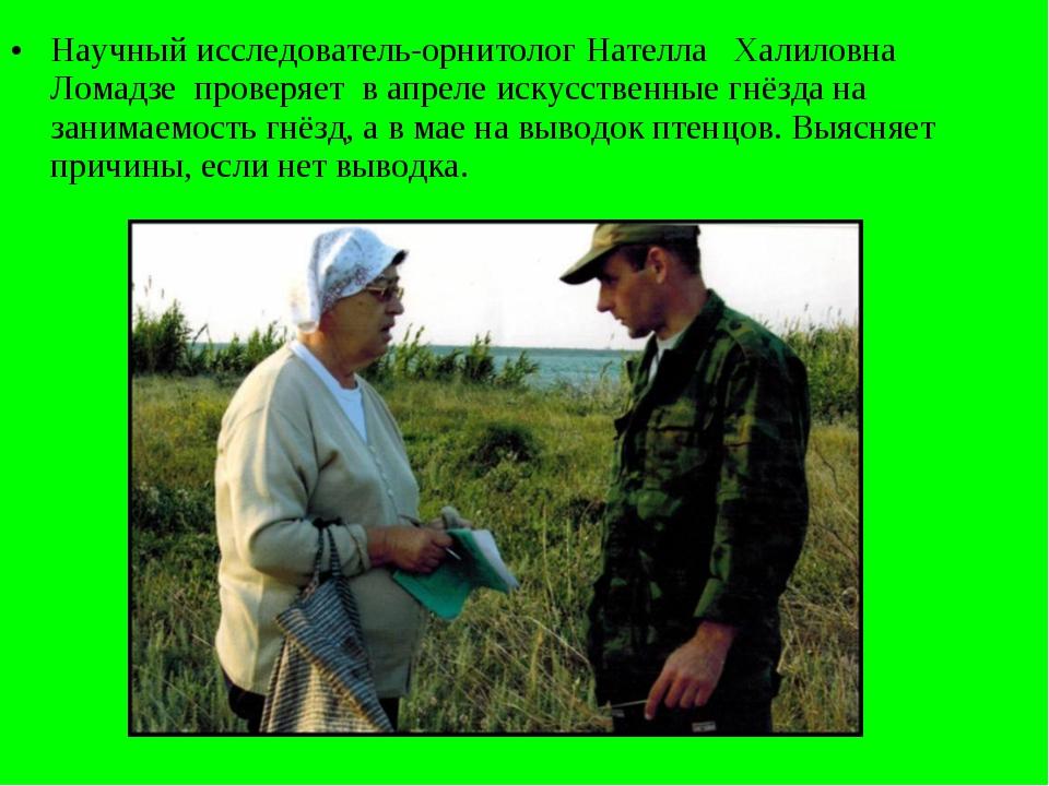 Научный исследователь-орнитолог Нателла Халиловна Ломадзе проверяет в апреле...