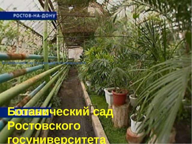 Ботанический сад Ростовского госуниверситета Ботанический сад Ростовского гос...
