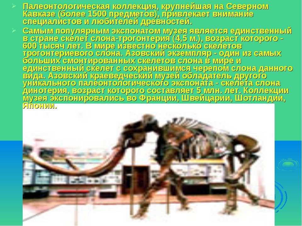 Палеонтологическая коллекция, крупнейшая на Северном Кавказе (более 1500 пред...