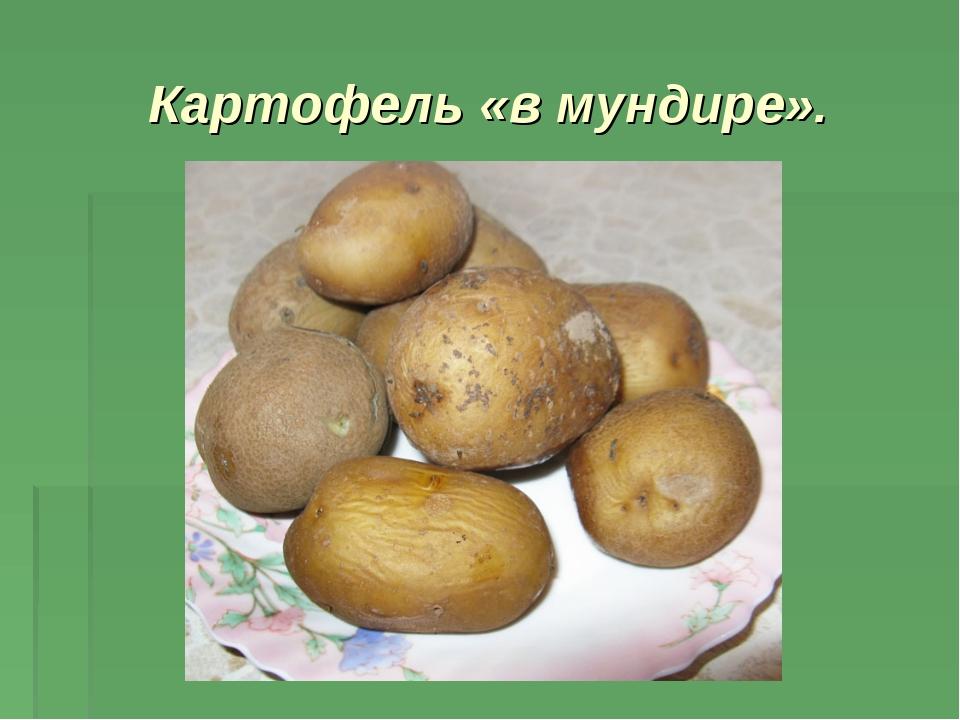 Картофель «в мундире».