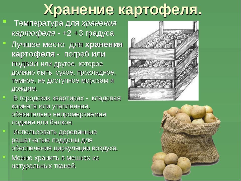Хранение картофеля. Температура дляхранения картофеля- +2 +3 градуса Лучш...