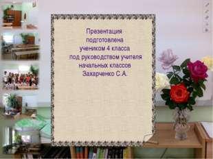 Презентация подготовлена учеником 4 класса под руководством учителя начальны
