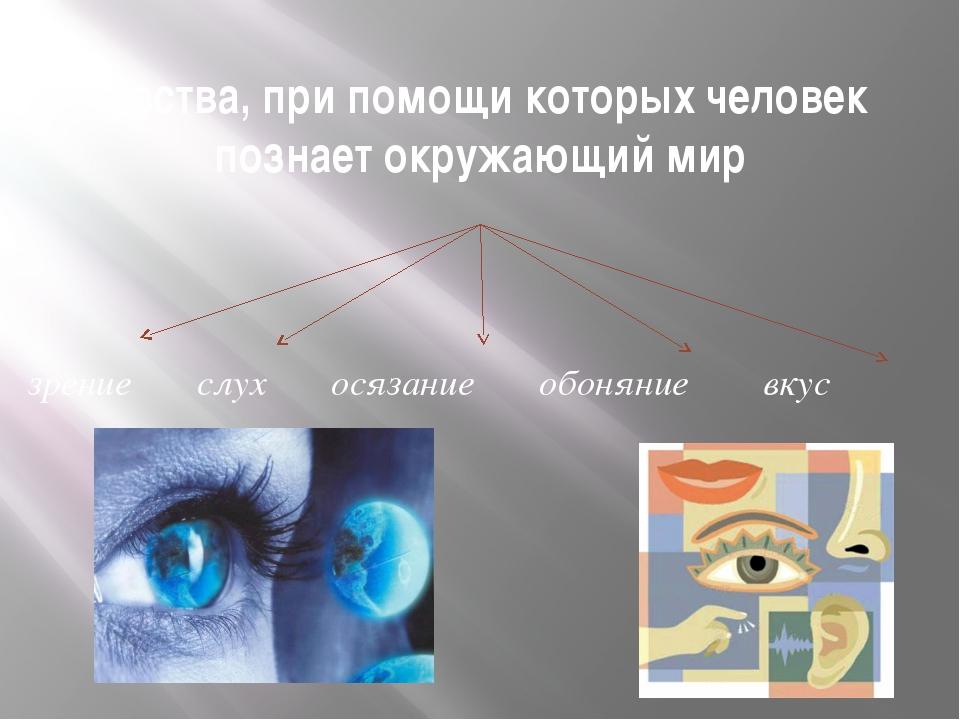 Чувства, при помощи которых человек познает окружающий мир зрение слух осязан...