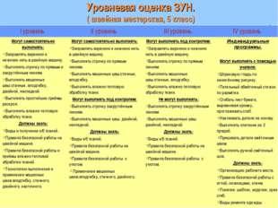 Уровневая оценка ЗУН. ( швейная мастерская, 5 класс) I уровень II уровень I