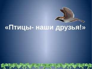 «Птицы- наши друзья!»
