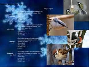 Зимние корма для птиц. Виды птиц Виды корма Большая синица -Подсолнух(цельный