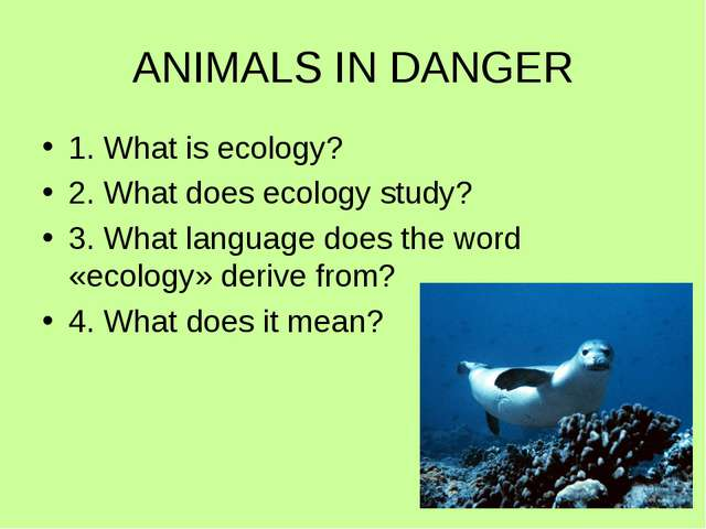 ANIMALS IN DANGER 1. What is ecology? 2. What does ecology study? 3. What lan...