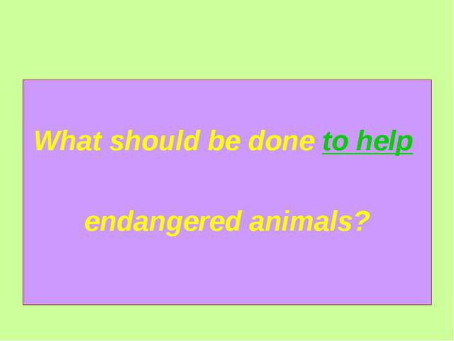 What should be done to help endangered animals?