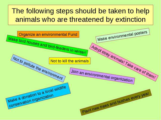 The following steps should be taken to help animals who are threatened by ext...