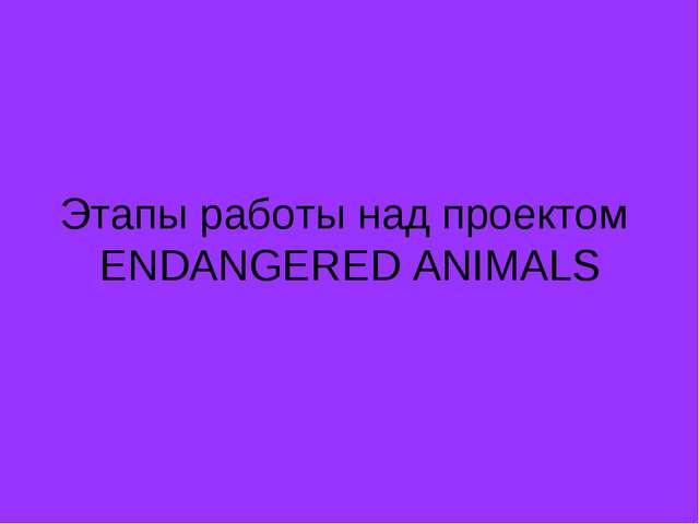 Этапы работы над проектом ENDANGERED ANIMALS