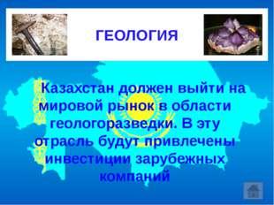 Казахстан должен выйти на мировой рынок в области геологоразведки. В эту о
