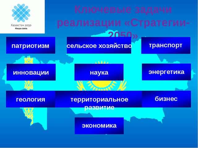 Ключевые задачи реализации «Стратегии-2050» инновации геология патриотизм тер...