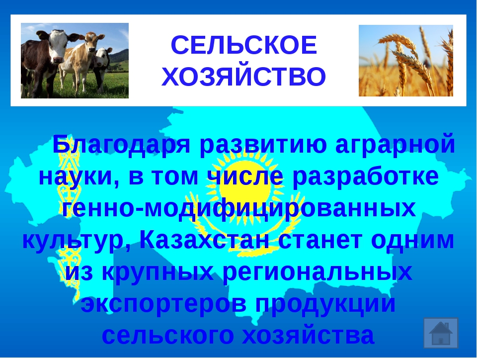 Благодаря развитию аграрной науки, в том числе разработке генно-модифициро...