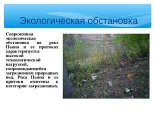 Экологическая обстановка Современная экологическая обстановка на реке Пьяна и