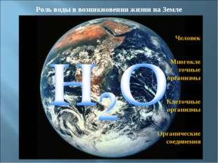 Роль воды в возникновении жизни на Земле Человек Многокле точные организмы Кл