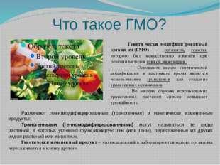 Что такое ГМО? Генети́чески модифици́рованный органи́зм(ГМО) – организм, ген