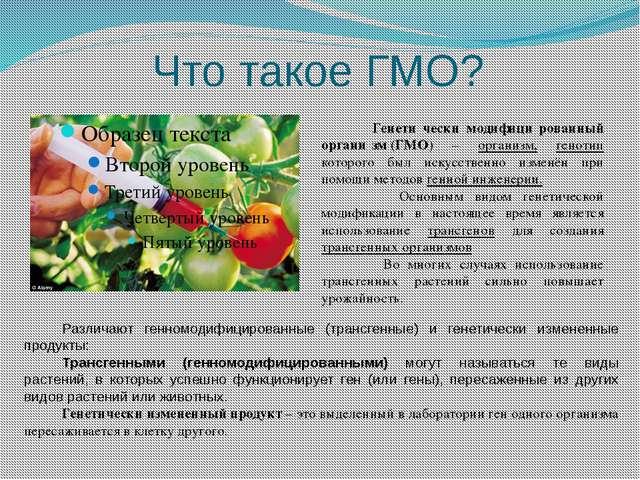 Что такое ГМО? Генети́чески модифици́рованный органи́зм(ГМО) – организм, ген...