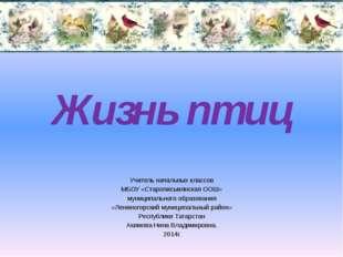 Жизнь птиц Учитель начальных классов МБОУ «Старописьмянская ООШ» муниципально