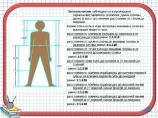 Золотое число наблюдается в пропорциях гармонично развитого человека: длина