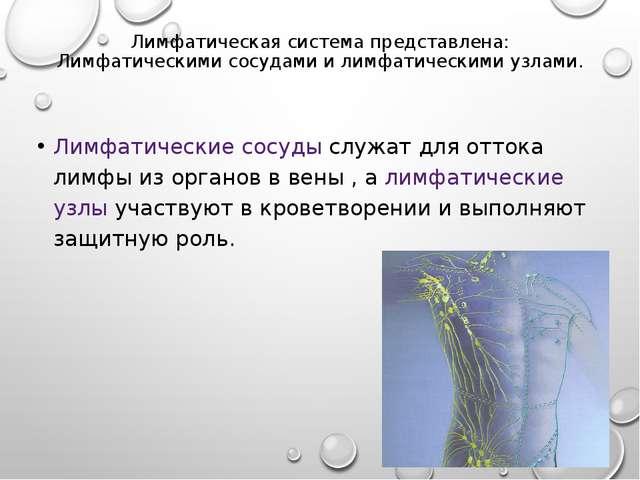 Лимфатическая система представлена: Лимфатическими сосудами и лимфатическими...