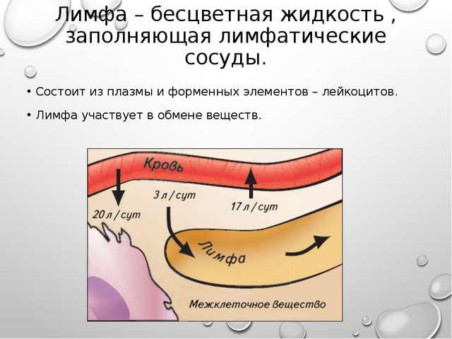Лимфа – бесцветная жидкость , заполняющая лимфатические сосуды. Состоит из пл...