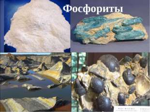 Фосфориты