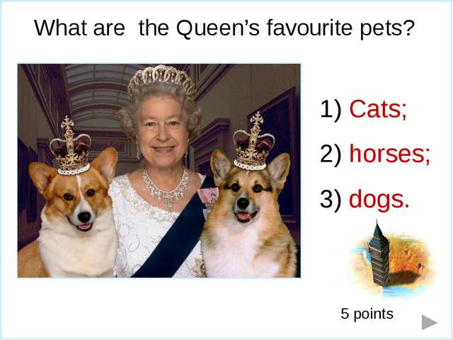 What is the Queen's favourite sport? Boxing; horse racing; tennis. 6 points