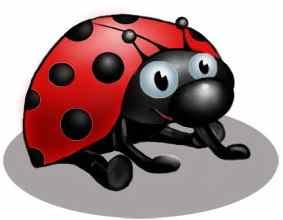 http://shininghappypeople.net/rwotd/media/blogs/rwotd/2010-03/Ladybug2.jpg