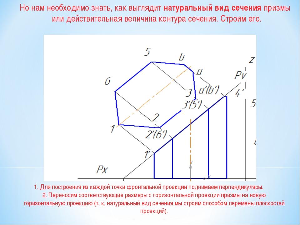 1. Для построения из каждой точки фронтальной проекции поднимаем перпендикуля...