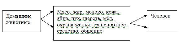 hello_html_m65b9a452.jpg