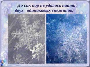 До сих пор не удалось найти двух одинаковых снежинок.