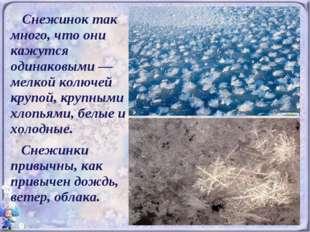 Снежинок так много, что они кажутся одинаковыми — мелкой колючей крупой, кру
