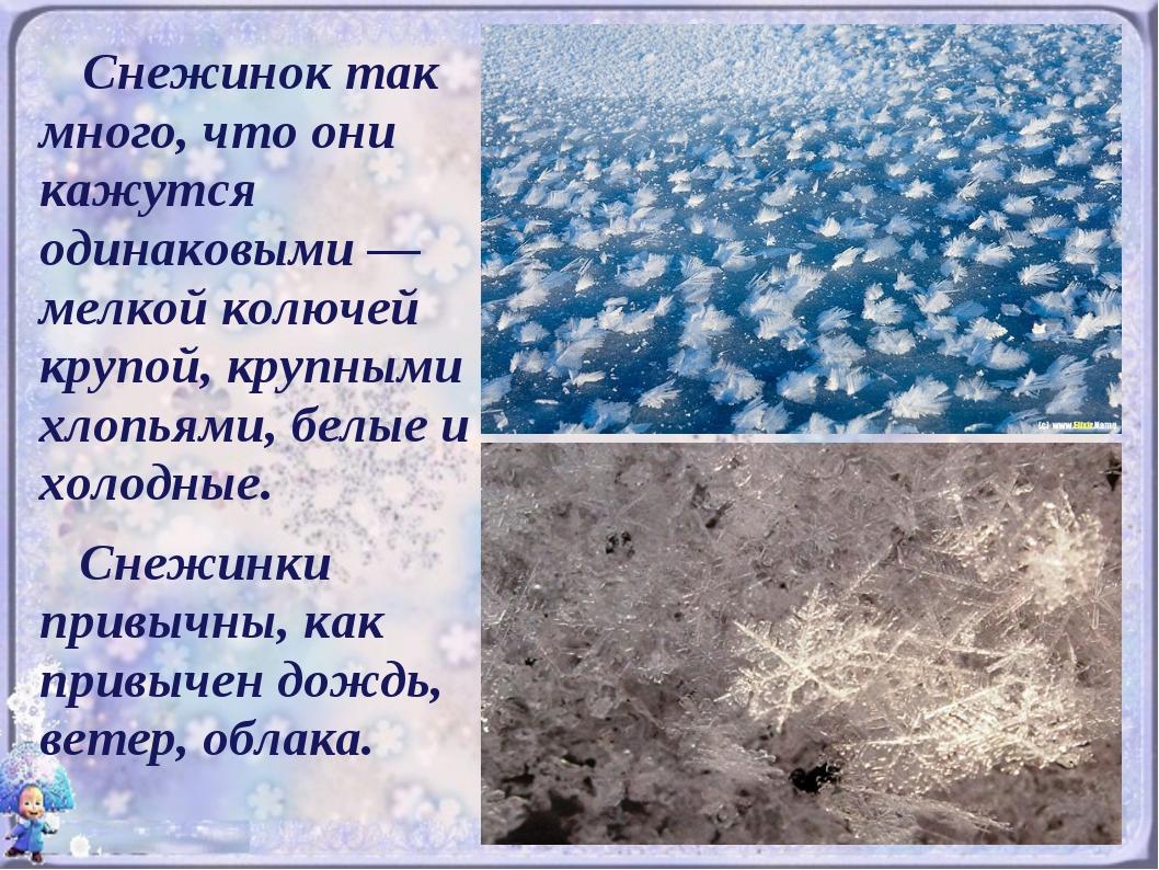 Снежинок так много, что они кажутся одинаковыми — мелкой колючей крупой, кру...